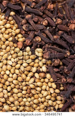 Close Up Of Dried Coriander Seeds And Clove Background, Dried Spicy Herb For Food Aroma And Natural