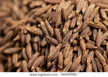Close Up Of Dried Cumin Seeds, Important Spice In Curry And Massaman Curry