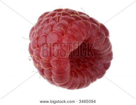 Single Raspberry