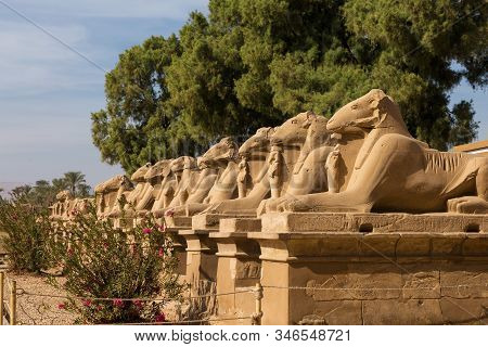 Fragment Of The Alley Of The Sphinxes In The Karnak Temple, Luxor, Egypt.