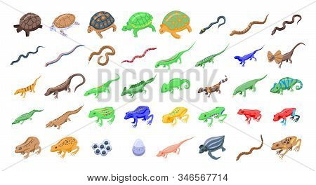 Reptiles And Amphibians Icons Set. Isometric Set Of Reptiles And Amphibians Vector Icons For Web Des