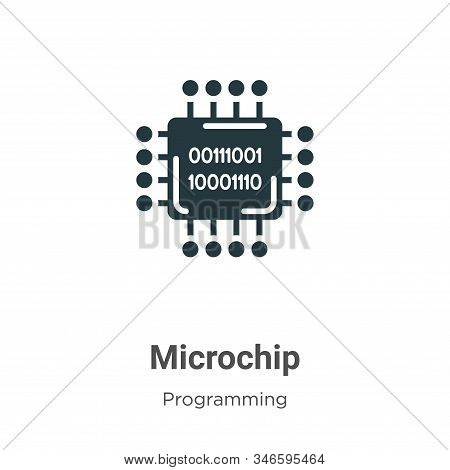 Microchip icon isolated on white background from programming collection. Microchip icon trendy and m