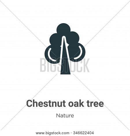 Chestnut oak tree icon isolated on white background from nature collection. Chestnut oak tree icon t