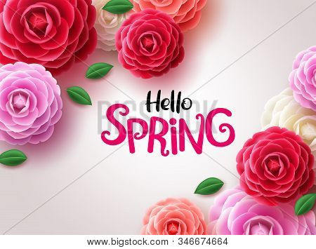 Hello Spring Flowers Vector Background. Hello Spring Greeting Text And Camellia And Rose Flowers  In