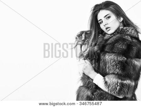 Female Brown Fur Coat. Fur Store Model Enjoy Warm In Soft Fluffy Coat With Collar. Fur Fashion Conce