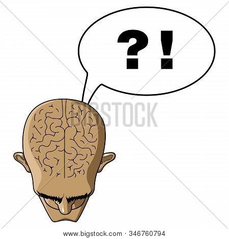 Head Of A Bald Man Top View. Brains From The Mind. Tormenting Thoughts. Questions And Answers. Bald