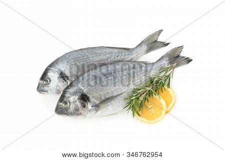 Dorado Fishes, Lemon And Rosemary Isolated On White Background