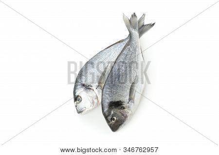 Fresh Dorado Fishes Isolated On White Background