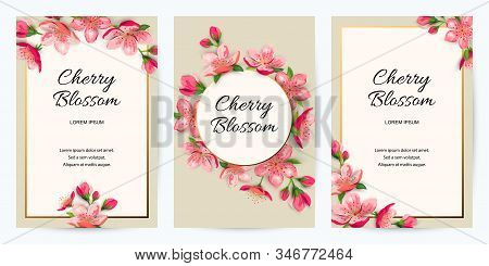 Spring Invitations With Blossom Sakura, Cherry Flowers. Place For Text. Great For Oriental Ivite, Fl
