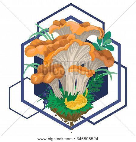 Mycelium, Red Mushrooms. Fall Fruits. Geometric Pattern On Background. Vector Flat Illustration