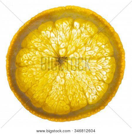 Lemon Slice In The Macro Detail On White Background