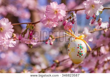 Easter background with blooming sakura and easter egg