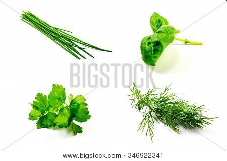 Dill, Chives, Basil And Parsley Isolated On White Background