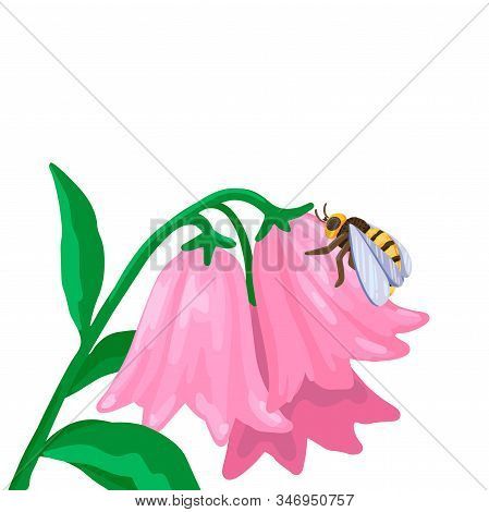 The Bee Crawls Along The Flower, Collects Nectar. Vector Illustration