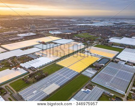 Aerial View Of Westland Or Glass City Greenhouse Horticulture Area In The Netherlands. One Of The Bi