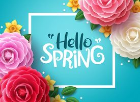 Hello Spring Vector Background. Spring Greeting Text, Colorful Camellia Flowers And Crocus Flowers I