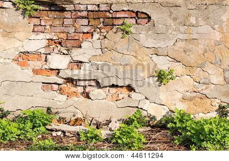 Wall With Chipped Plaster And Grass