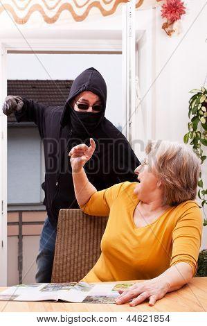 Perpetrators Of Violence, Coat Of Female Senior