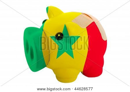 Closed Piggy Rich Bank With Bandage In Colors National Flag Of Senegal