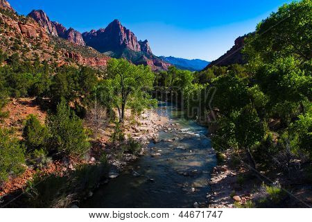 Beautiful landscape of Zion National Park,Utah