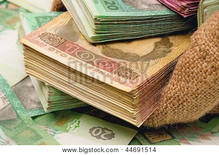 Close-up of money bag with ukrainian hryvna