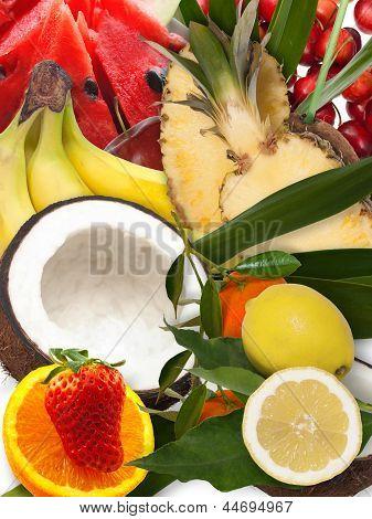 Frutta Fresca   Frsh Fruit