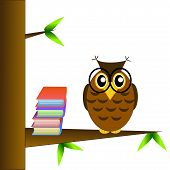 a clever owl spectacled sits on a tree with books on a white background illustration a raster poster