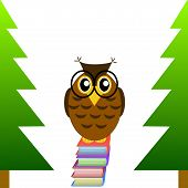a clever owl spectacled sits on books on a white background illustration a raster poster