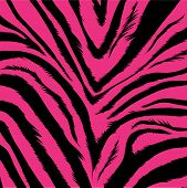 aggressive pink background based on zebra fur poster