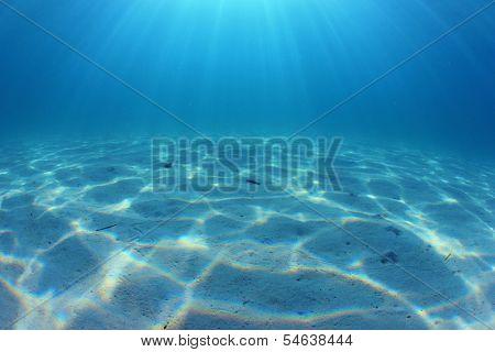 Underwater Ocean Floor Background