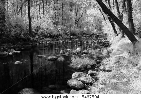 Mountain Stream
