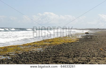 Surf against a rocky shore