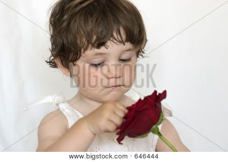 Little Girl With Rose