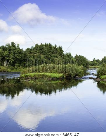 Reflections On A Summer Day