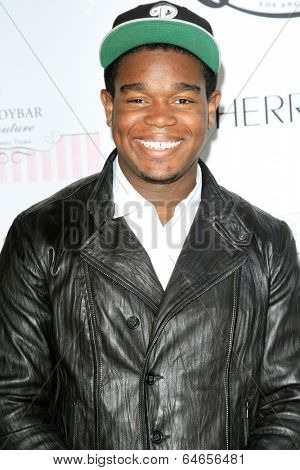 LOS ANGELES - APR 27:  Dexter Darden at the Ryan Newman's Glitz and Glam Sweet 16 birthday party at Emerson Theater on April 27, 2014 in Los Angeles, CA