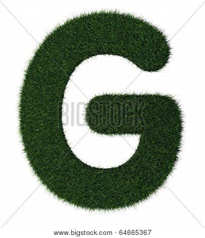 Grass alphabet-G
