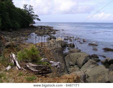Shoreline of the Strait of Juan de Fuca