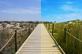 landscape with a broadwalk before and after the image editing process poster