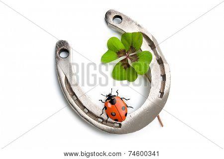 Horseshoes, clover with four leaf and ladybug on white background