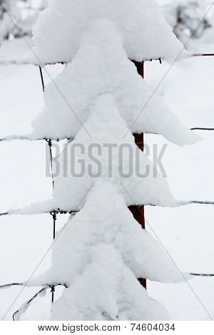Snow Triangles
