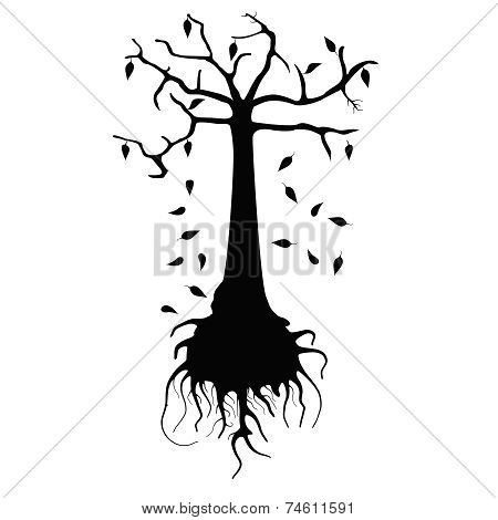 Withering Tree
