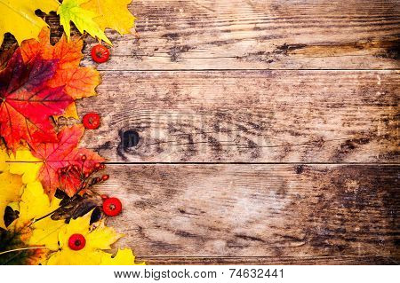 Colorful autumn leaves on the wooden planks.
