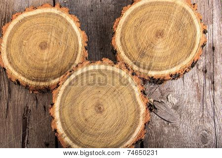 Set Of Tree Stumps Round Cut With Annual Rings