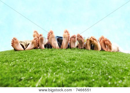 Image of several legs lying on the grass and resting poster