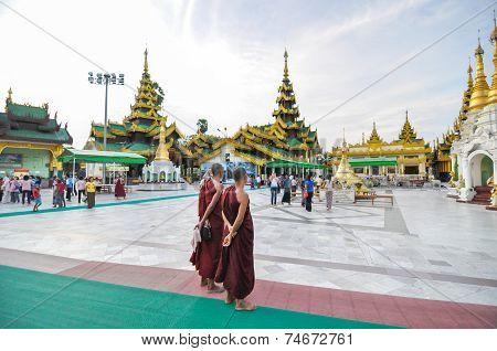 Rangoon, Myanmar - October 11, 2013: Unidentified Young Monks At Shwedagon Pagoda