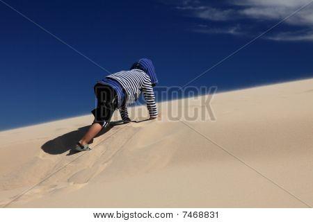 Sand Crawl