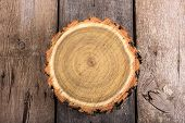 Tree stump round cut with annual rings on wooden background from top view poster