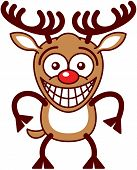 Funny brown reindeer with big antlers and red nose while staring at you, posing and grinning in an embarrassed way poster