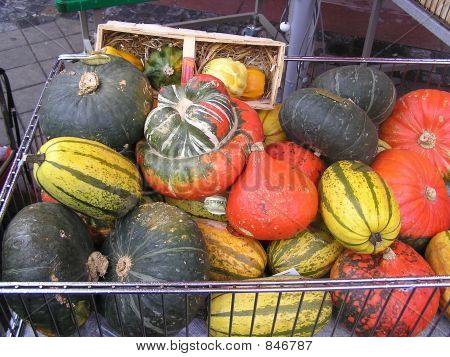 Pumpkins in the caddy
