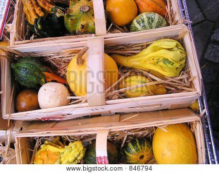 Vegetables in pack